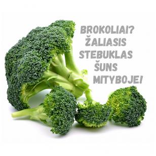 Brokoliai - žaliasis stebuklas šuns mityboje