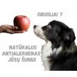 Obuoliai - natūralus antialergenas jūsų šuniui